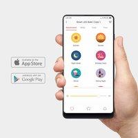 Xiaomi Yeelight Smart LED Bulb (Color) 10W Upgraded Version